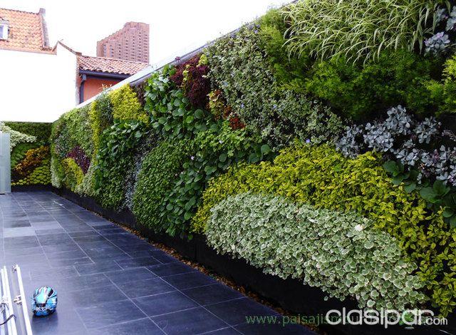 Muros verdes jardines verticales proyectos e for Jardines verticales precios